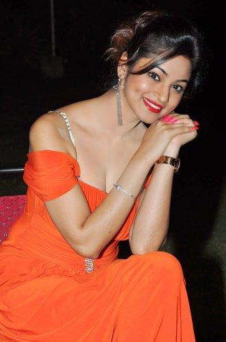 shilpi sharma gown